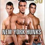 Michael Lucas' Auditions 30: New York Hunks