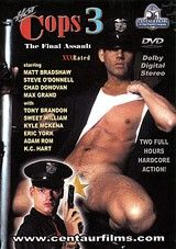 Hot Cops 3: The Final Assault