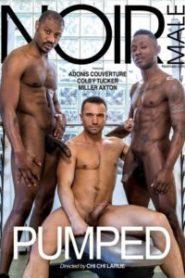 HD gay orgie ge din pojkvän en avsugning